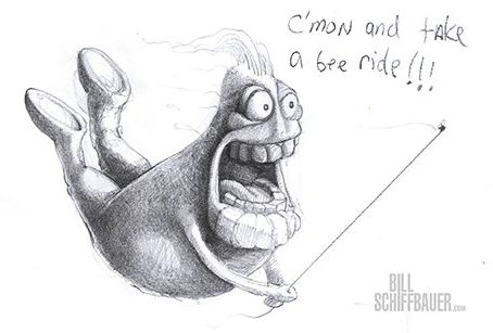 Come on and take a bee ride - Bill Schiffbauer